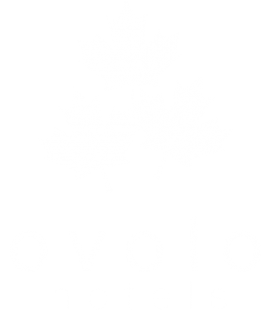 ovolo hotels-colored
